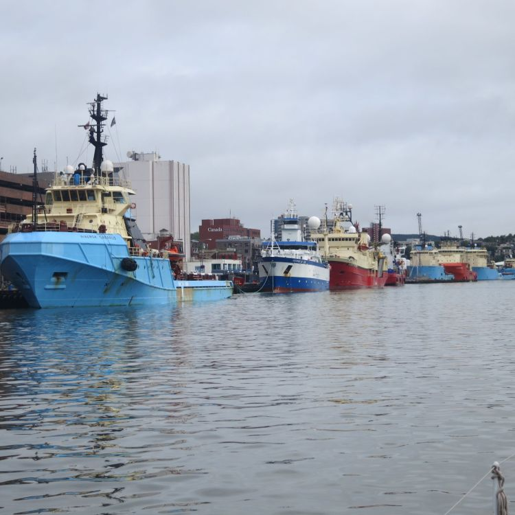 Offshore oil rig service vessels, St. John's harbour