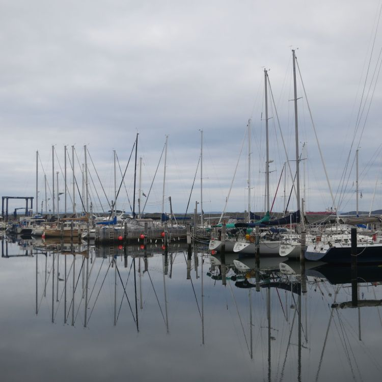 A quiet morning at Royal Newfoundland Yacht Club